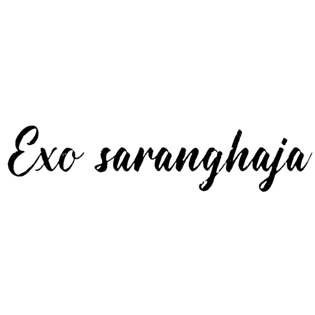 Do Kyungsoo TikTok avatar
