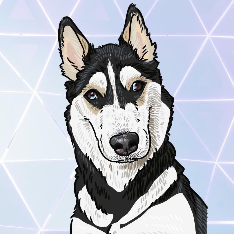 Maya the Husky TikTok avatar