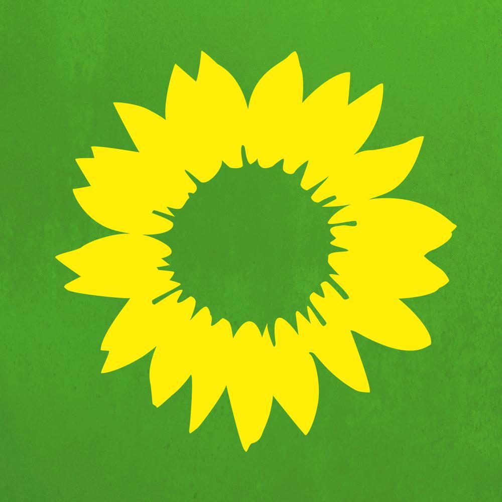 Die Grünen sind unsere Zukunft TikTok avatar