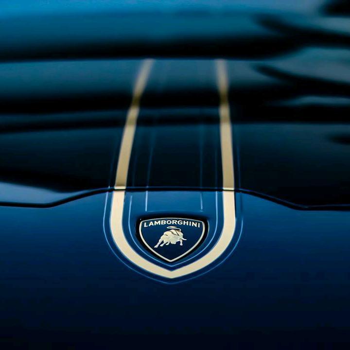 Exotic cars TikTok avatar