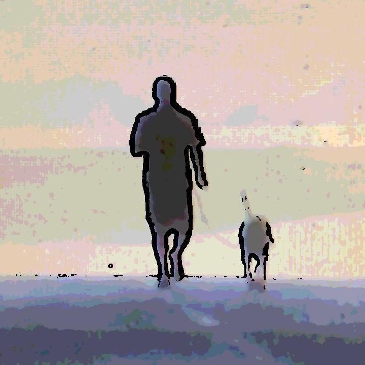 John Gotta The Dog Trainer TikTok avatar
