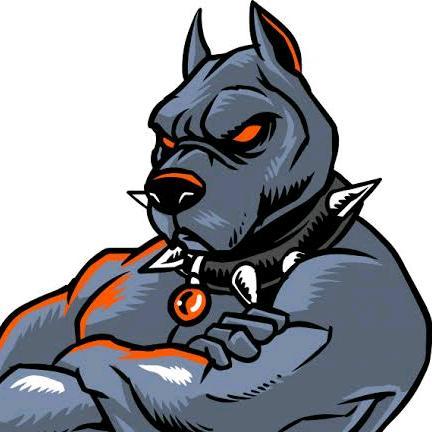 antiking.198 TikTok avatar