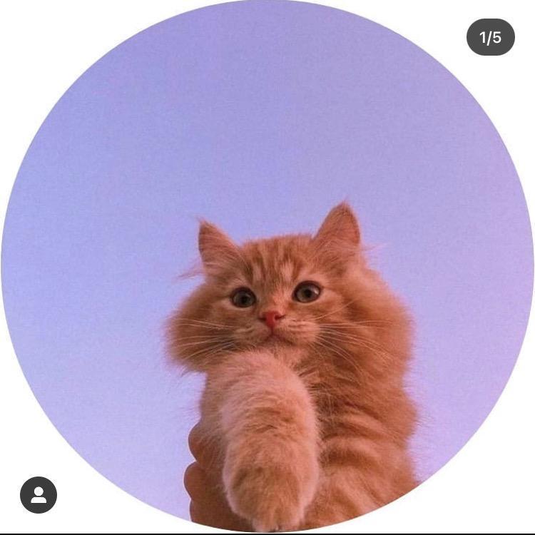 😝😝😝 TikTok avatar
