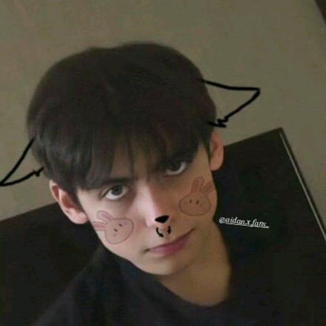 Aidan Gallagher TikTok avatar