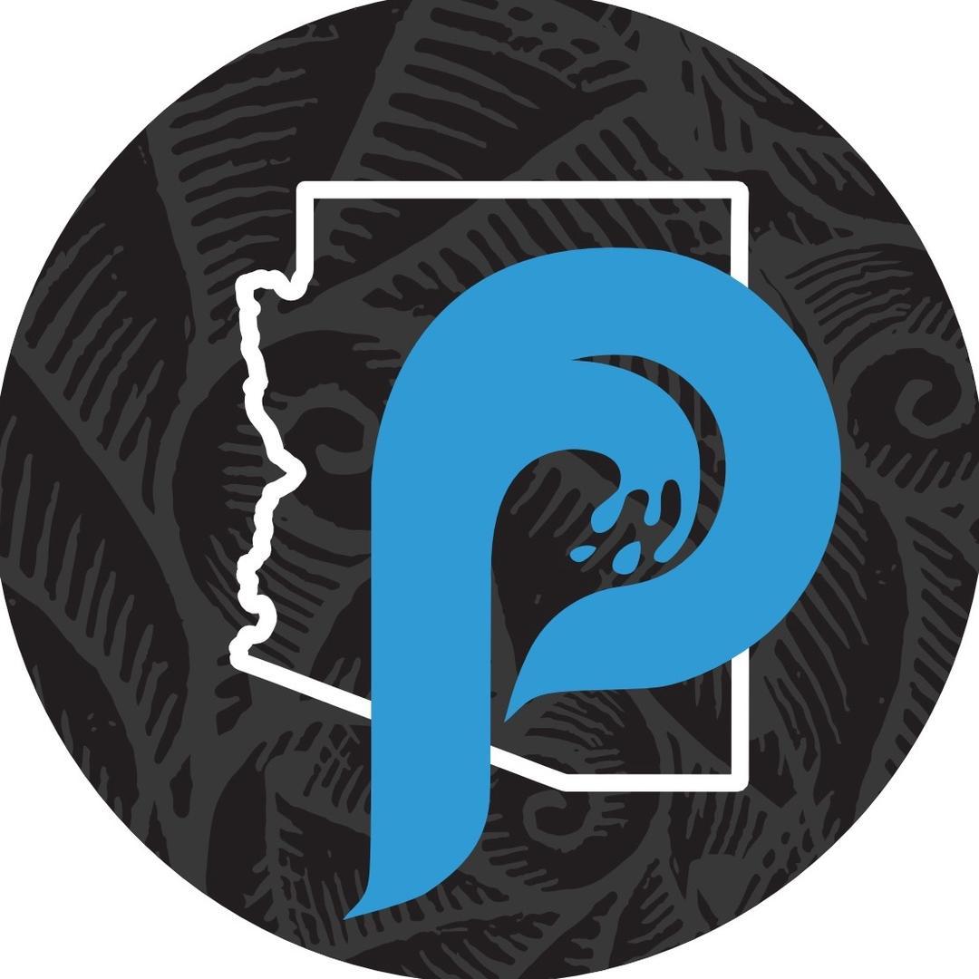 Premier Pool Co. TikTok avatar