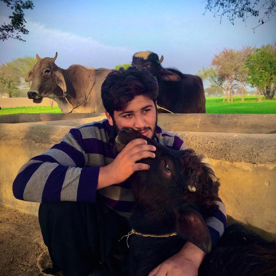 Saqib Bhai TikTok avatar