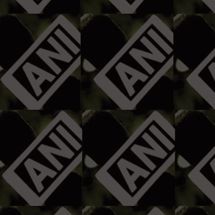 ANI News Agency TikTok avatar