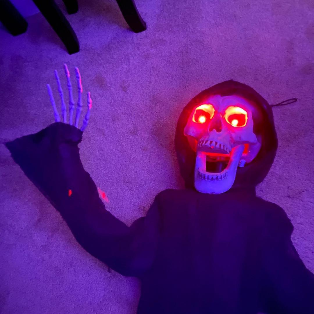 CheemLord TikTok avatar