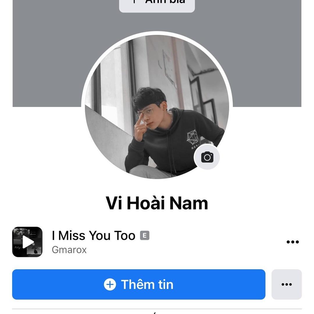 Vi Hoài Nam TikTok avatar