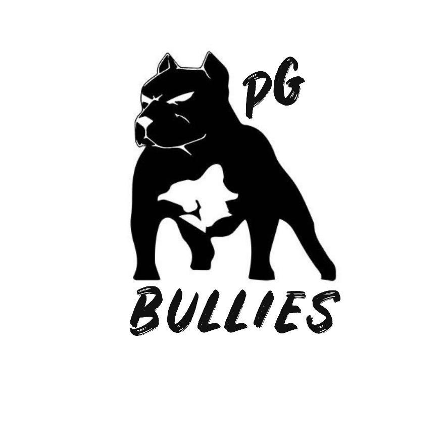 PRIME GUARD BULLIES TikTok avatar